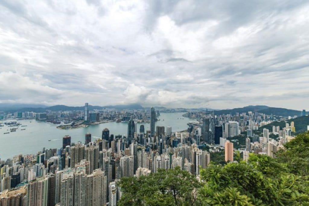 Hong Kong skyline, vatten, höghus och i förgrunden grönska